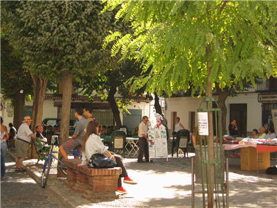 a typical plaza in albayzin, granada, spain